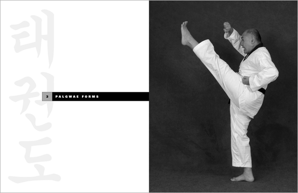 wtf taekwondo training manual pdf